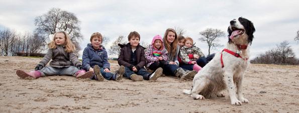 dog on beach with children